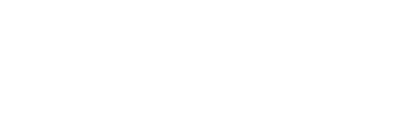 Alma's LDS Tours in Cancun official logo - www.almaldstours.us