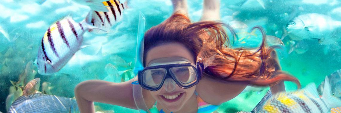 snorkel-banner